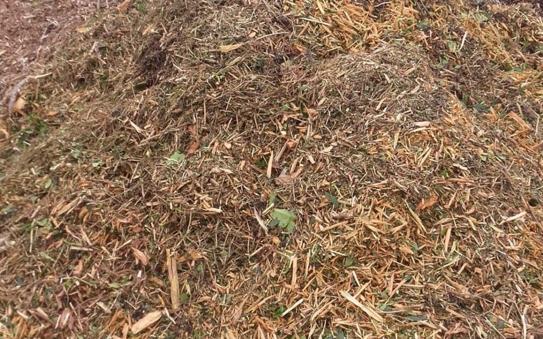 la gestion des déchets verts issus des chantiers a…