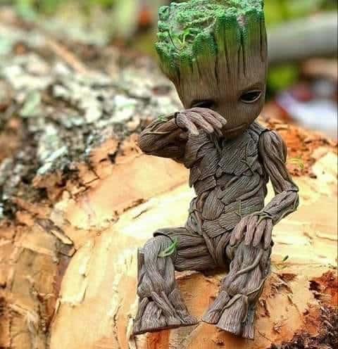 La gestion de notre environnement doit être notre …