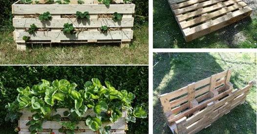 Palettes en bois: 60 manières originales de les réutiliser