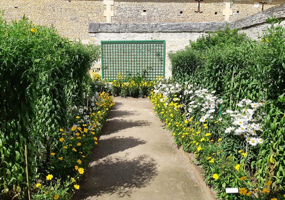 Visite des jardins remarquable de Canon dans le ca…